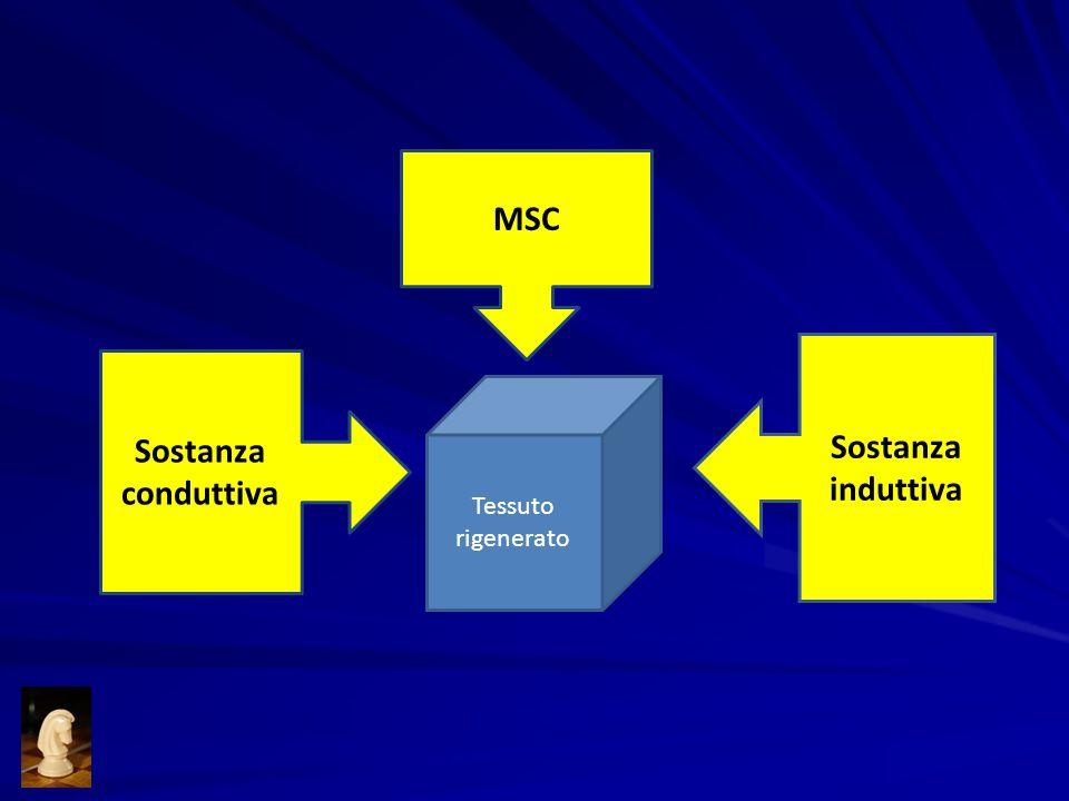 Sostanza conduttiva MSC Sostanza induttiva Tessuto rigenerato