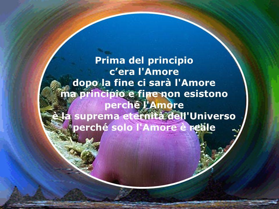 Senza Amore non esisterebbe niente però il niente non esiste perché l'Amore è la suprema totalità dell'Universo