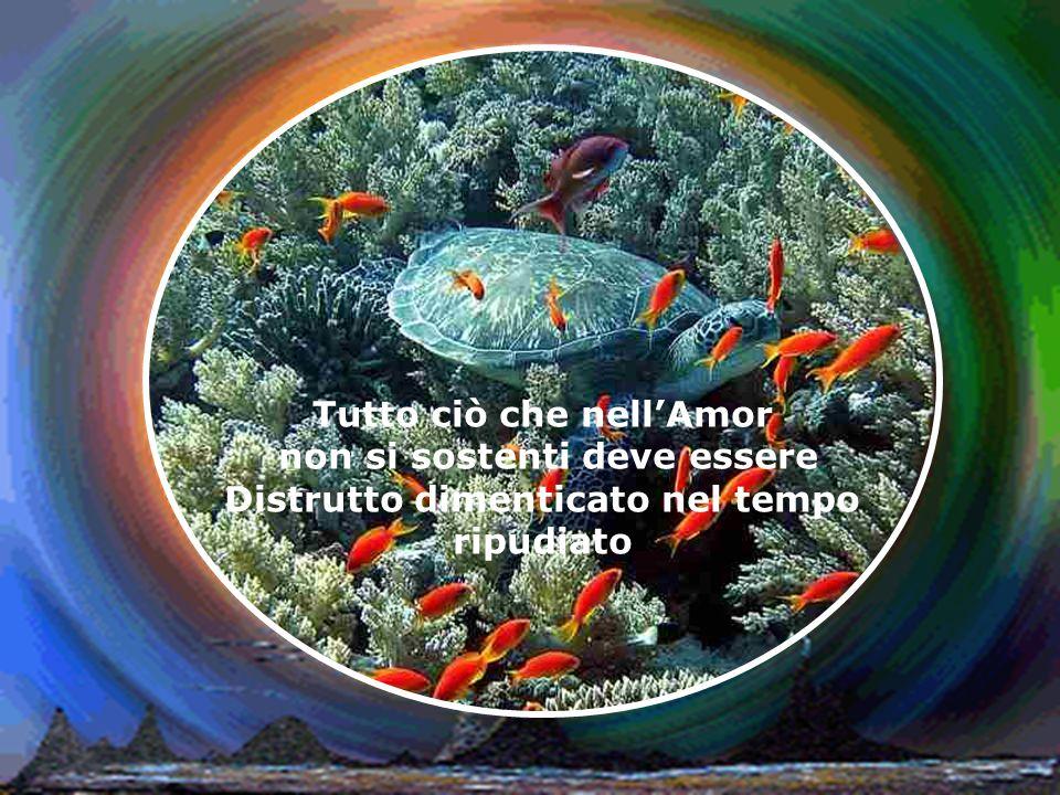 Prima del principio cera l Amore dopo la fine ci sarà l Amore ma principio e fine non esistono perché l Amore è la suprema eternità dell Universo perché solo l Amore è reale