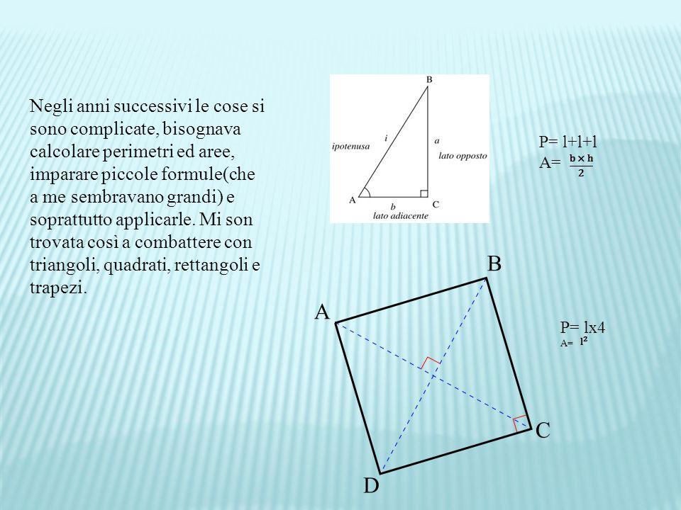 Negli anni successivi le cose si sono complicate, bisognava calcolare perimetri ed aree, imparare piccole formule(che a me sembravano grandi) e soprattutto applicarle.