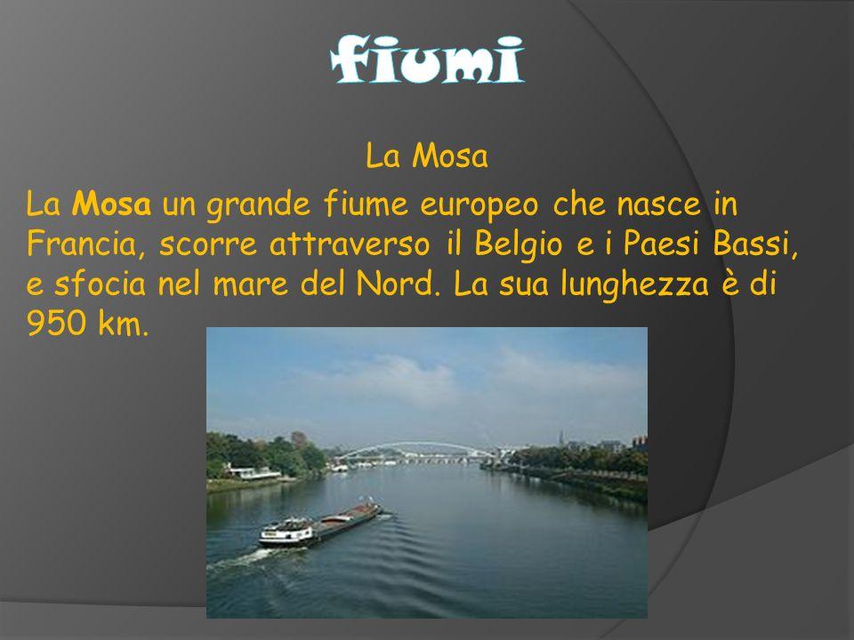 La Mosa La Mosa un grande fiume europeo che nasce in Francia, scorre attraverso il Belgio e i Paesi Bassi, e sfocia nel mare del Nord.