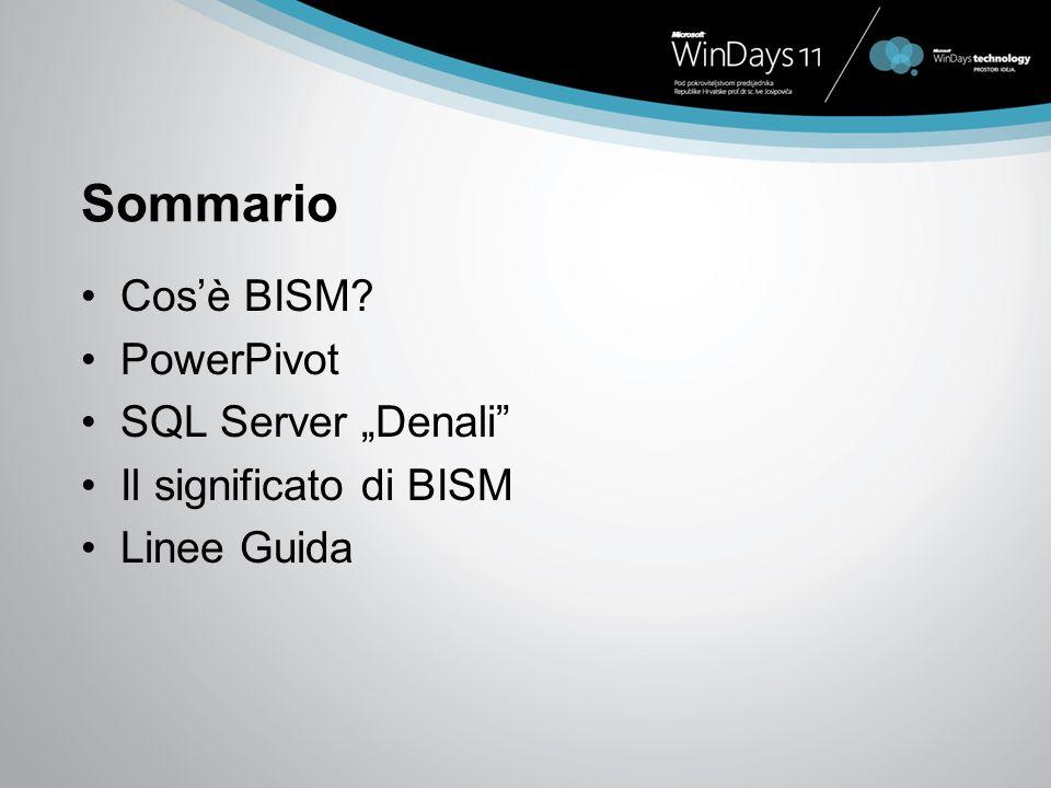 Sommario Cosè BISM PowerPivot SQL Server Denali Il significato di BISM Linee Guida