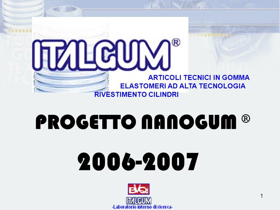 1 PROGETTO NANOGUM ® 2006-2007 ARTICOLI TECNICI IN GOMMA ELASTOMERI AD ALTA TECNOLOGIA RIVESTIMENTO CILINDRI