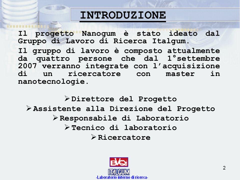 2 Il progetto Nanogum è stato ideato dal Gruppo di Lavoro di Ricerca Italgum. Il gruppo di lavoro è composto attualmente da quattro persone che dal 1°