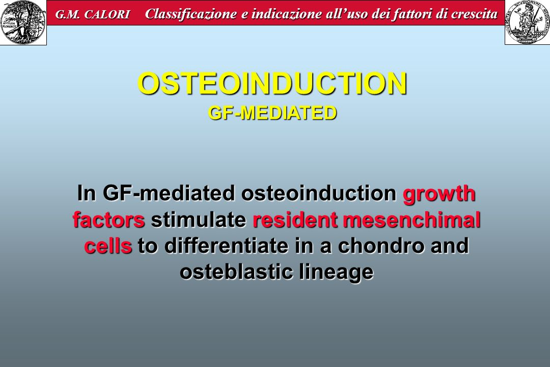 In GF-mediated osteoinduction growth factors stimulate resident mesenchimal cells to differentiate in a chondro and osteblastic lineage OSTEOINDUCTION