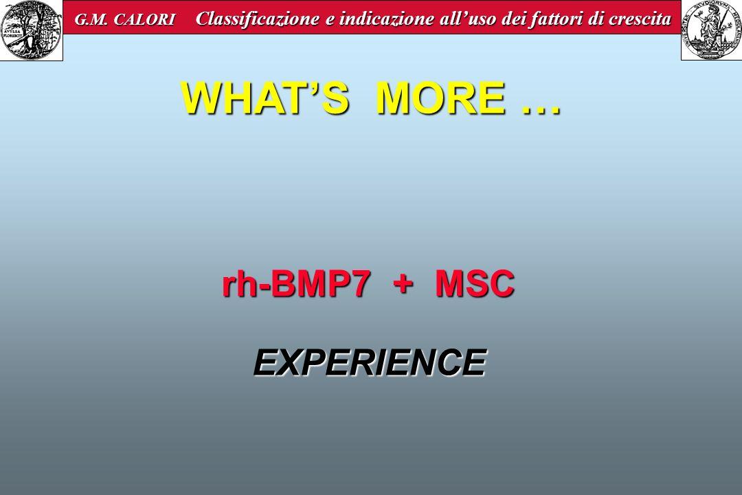 rh-BMP7 + MSC EXPERIENCE WHATS MORE … G.M. CALORI Classificazione e indicazione alluso dei fattori di crescita G.M. CALORI Classificazione e indicazio