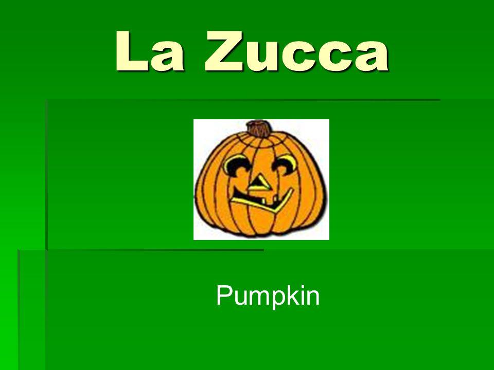 La Zucca Pumpkin