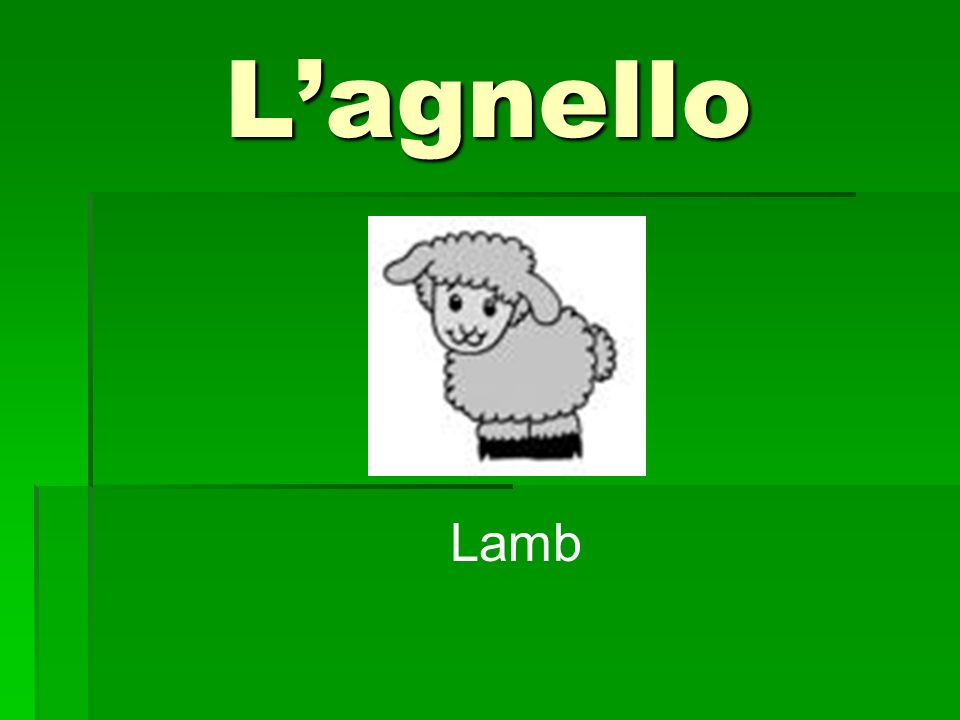 Lagnello Lamb