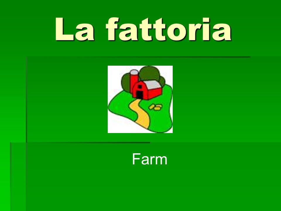 La fattoria Farm