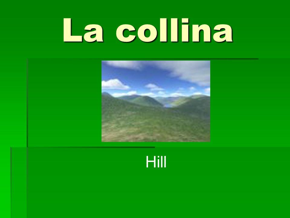 La collina Hill