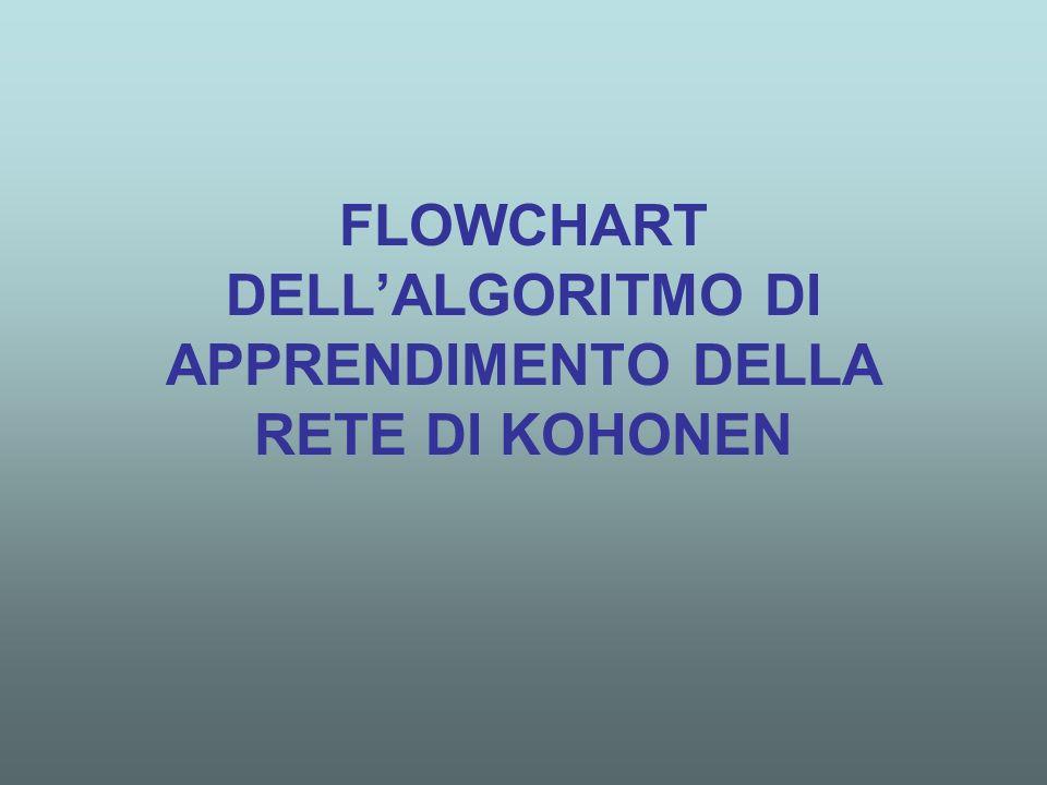 FLOWCHART DELLALGORITMO DI APPRENDIMENTO DELLA RETE DI KOHONEN