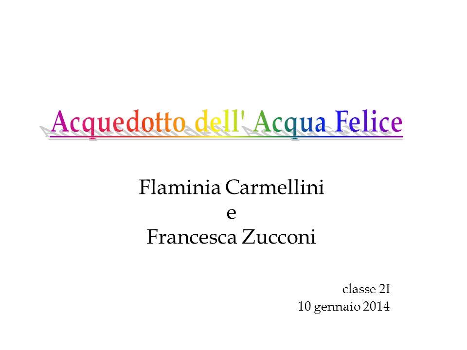 Flaminia Carmellini e Francesca Zucconi classe 2I 10 gennaio 2014