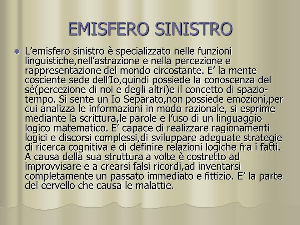 EMISFERO SINISTRO Lemisfero sinistro è specializzato nelle funzioni linguistiche,nellastrazione e nella percezione e rappresentazione del mondo circos