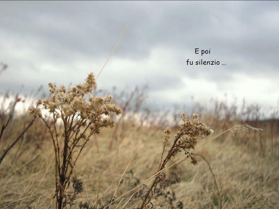 Il vento scuote le fronde, come i pensieri dentro di me, foglie stracciate di un sogno sulla riva del fiume.