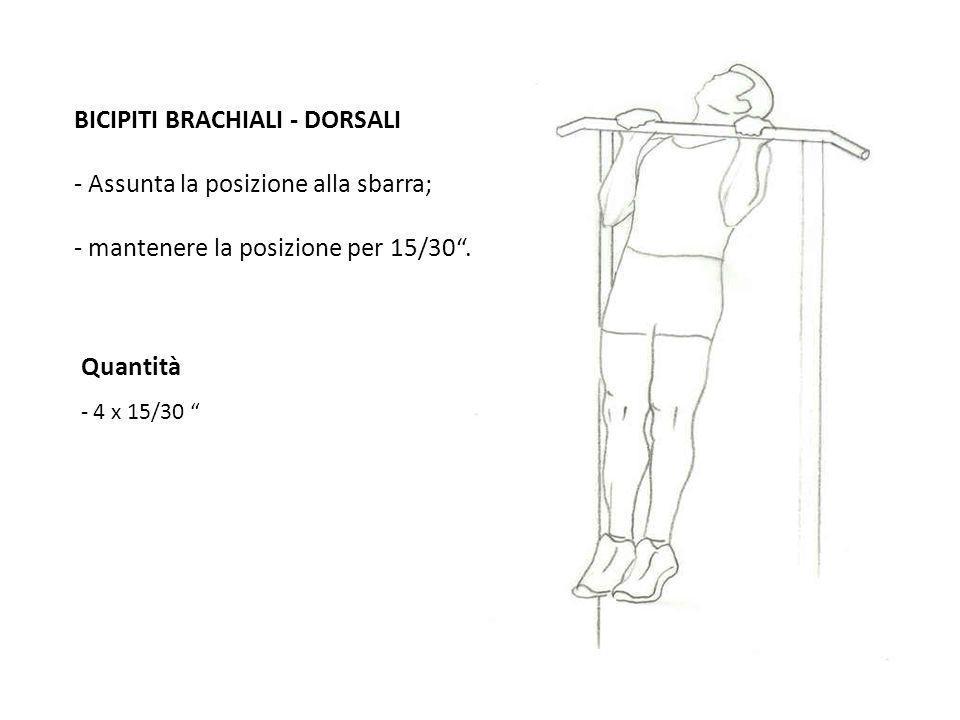 Quantità - 4 x 15/30 BICIPITI BRACHIALI - DORSALI - Assunta la posizione alla sbarra; - mantenere la posizione per 15/30.
