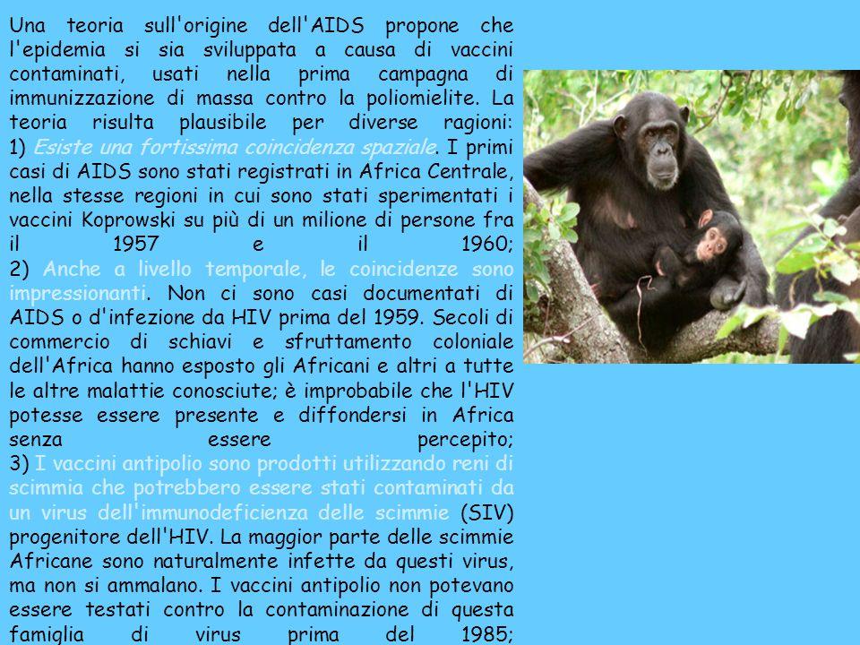 4) È diffusamente conosciuto nel mondo medico che un altro virus delle scimmie, l SV40, è stato trasmesso involontariamente a milioni di persone attraverso i vaccini antipolio.