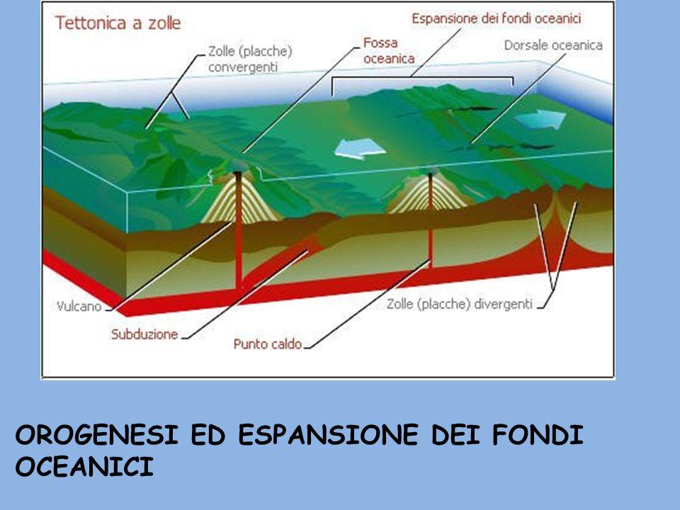 OROGENESI ED ESPANSIONE DEI FONDI OCEANICI