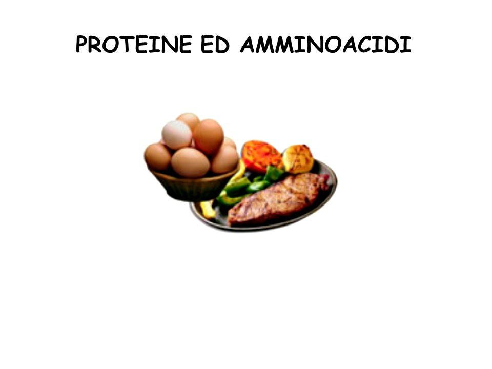 Bisogno di amminoacidi essenziali a diverse età (mg/kg/die)