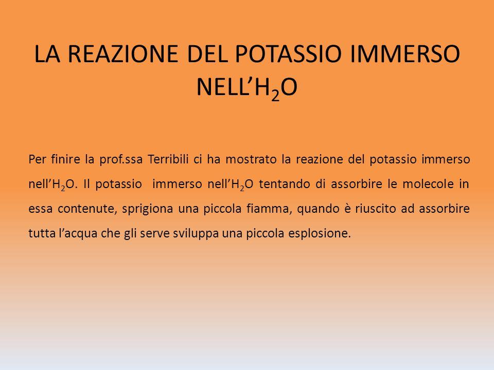 LA REAZIONE DEL POTASSIO IMMERSO NELLH 2 O Per finire la prof.ssa Terribili ci ha mostrato la reazione del potassio immerso nellH 2 O. Il potassio imm