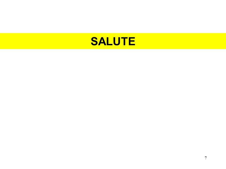 SALUTE 7