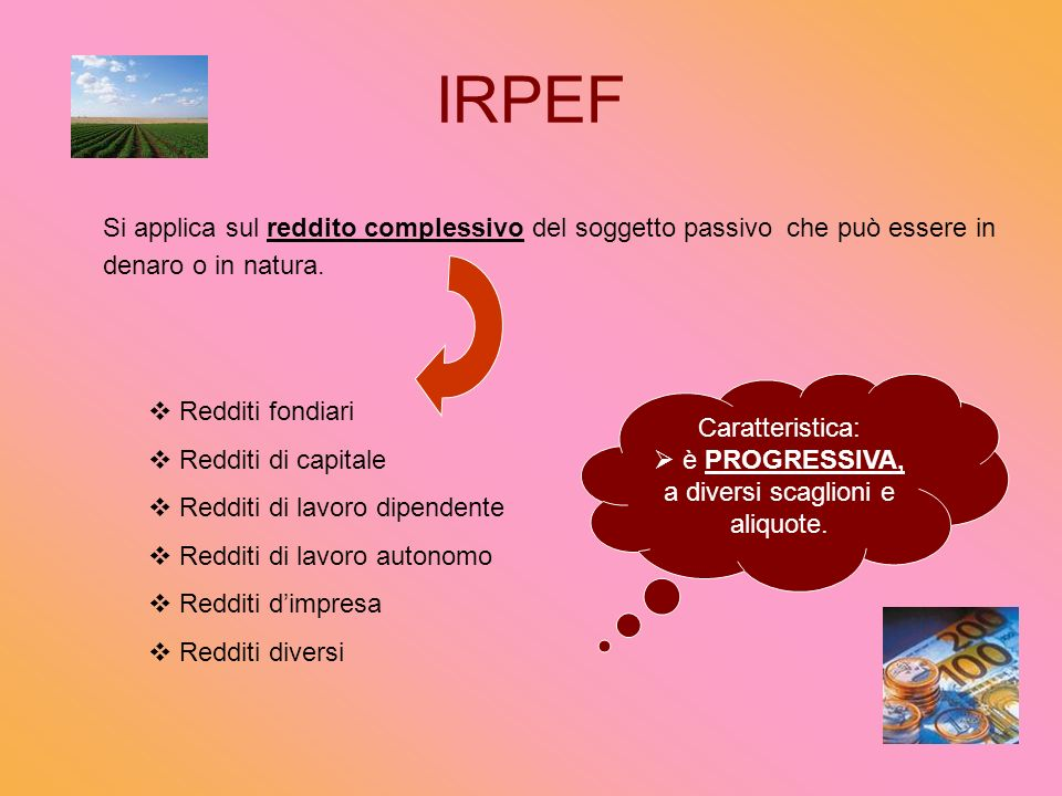 IRPEF Si applica sul reddito complessivo del soggetto passivo che può essere in denaro o in natura.