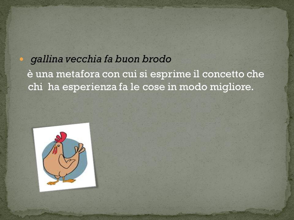 gallina vecchia fa buon brodo è una metafora con cui si esprime il concetto che chi ha esperienza fa le cose in modo migliore.