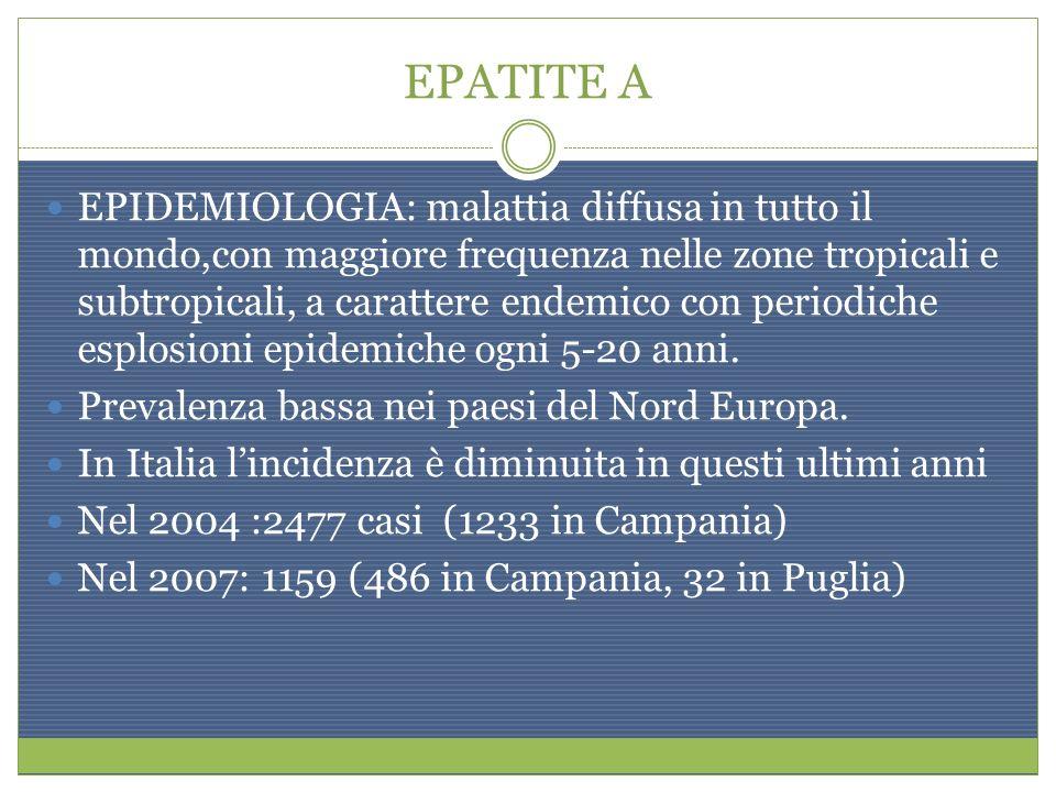 EPATITE A EPIDEMIOLOGIA: malattia diffusa in tutto il mondo,con maggiore frequenza nelle zone tropicali e subtropicali, a carattere endemico con perio