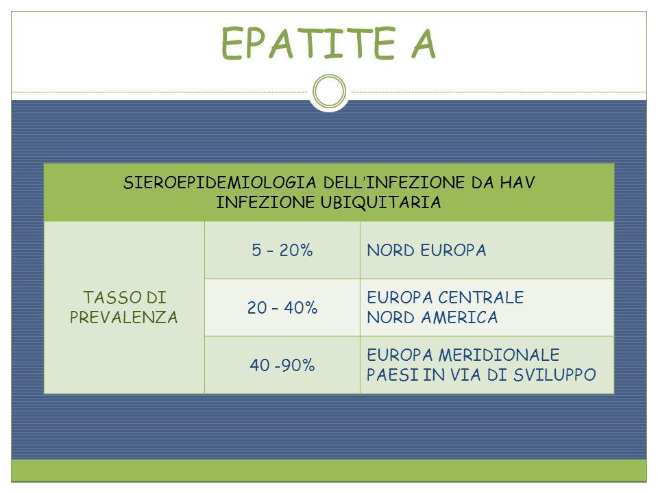 EPATITE A SIEROEPIDEMIOLOGIA DELLINFEZIONE DA HAV INFEZIONE UBIQUITARIA TASSO DI PREVALENZA 5 – 20%NORD EUROPA 20 – 40% EUROPA CENTRALE NORD AMERICA 4