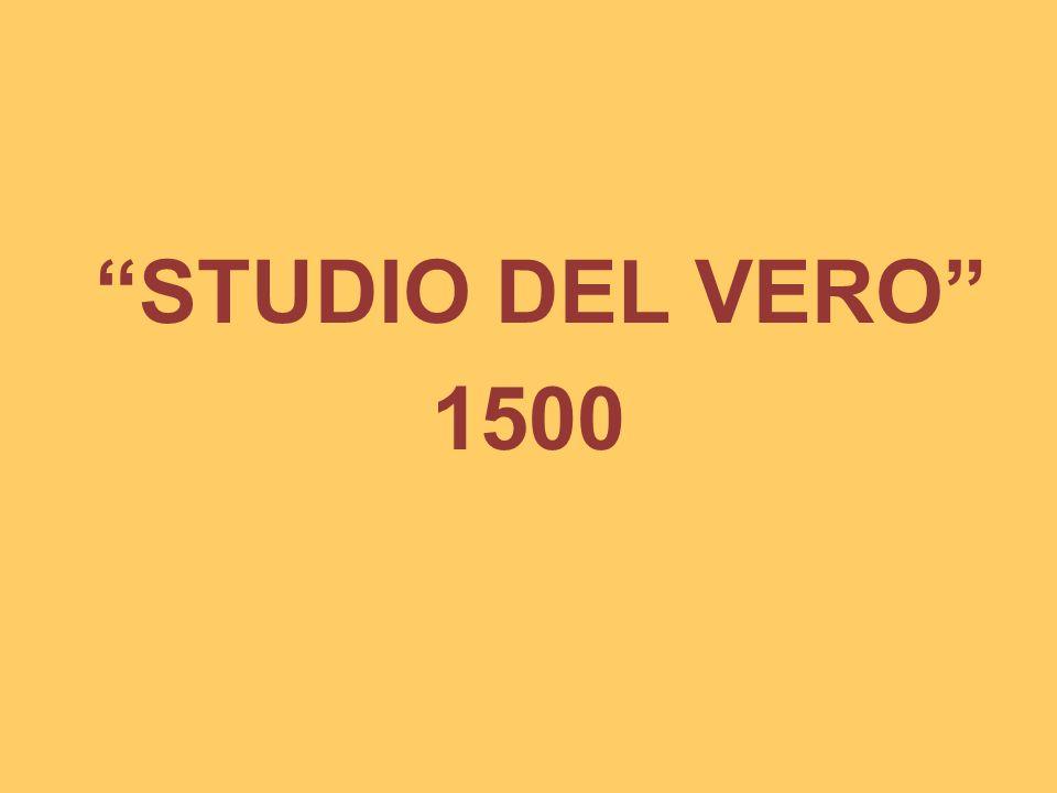 STUDIO DEL VERO 1500