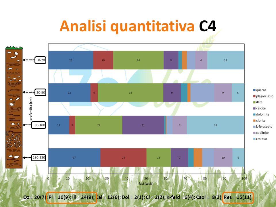 Analisi quantitativa C4 Qz = 20(7); Pl = 10(9); Ill = 24(9); Cal = 12(6); Dol = 2(1); Cl = 2(2); K-feld = 6(4); Caol = 8(2); Res = 15(11)