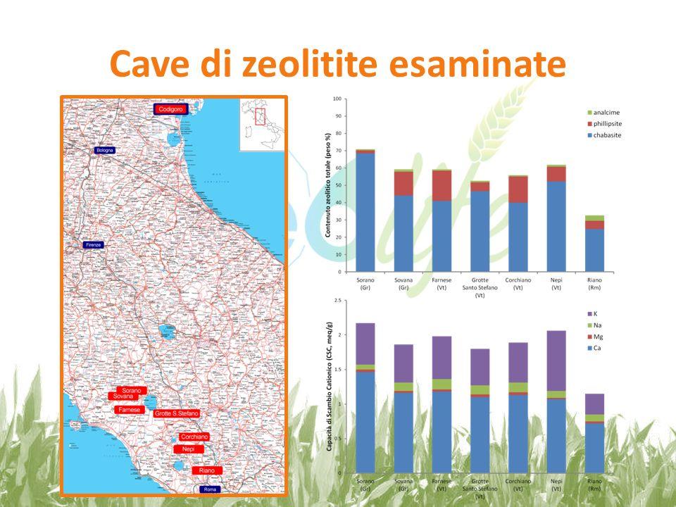 Risultati dellindagine La zeolitite della cava di Sorano (Piandirena) è caratterizzata dal più alto contenuto zeolitico totale, con predominanza di chabasite, e dal più alto valore di CSC.