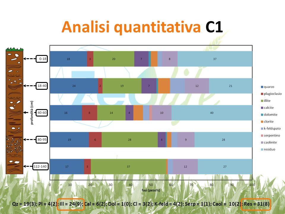 Analisi quantitativa C1 Qz = 19(3); Pl = 4(2); Ill = 24(9); Cal = 6(2); Dol = 1(0); Cl = 3(2); K-feld = 4(2); Serp = 1(1); Caol = 10(2); Res = 31(8)