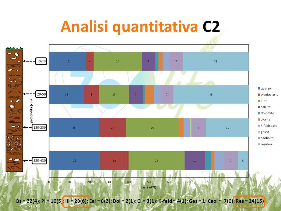 Analisi quantitativa C3 Qz = 25(5); Pl = 8(4); Ill = 20(1); Cal = 7(4); Dol = 2(1); Cl = 2(1); K-feld = 3(1); Caol = 8(1); Res = 26(10)