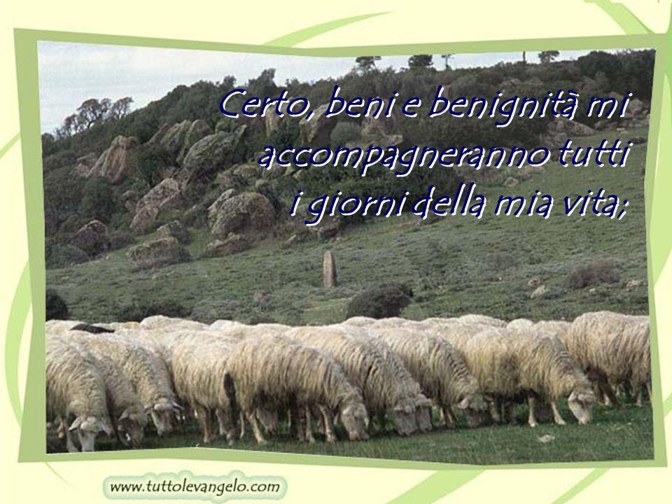 Certo, beni e benignità mi accompagneranno tutti i giorni della mia vita; Certo, beni e benignità mi accompagneranno tutti i giorni della mia vita;