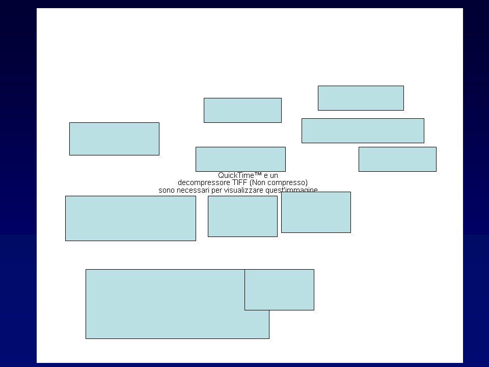 Albero decisionale TSH, FT3, FT4, AAT, AAM, Trab TSH, FT3, FT4, AAT, AAM, Trab EcografiaScintigrafia+iodocaptazione -blocc -bloccCortis.