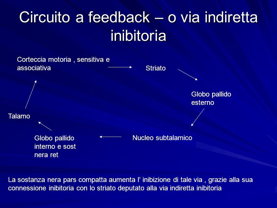 Circuito a feedback – o via indiretta inibitoria Corteccia motoria, sensitiva e associativa Striato Globo pallido esterno Nucleo subtalamico Globo pal