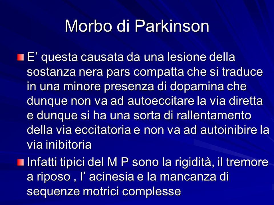 Morbo di Parkinson E questa causata da una lesione della sostanza nera pars compatta che si traduce in una minore presenza di dopamina che dunque non