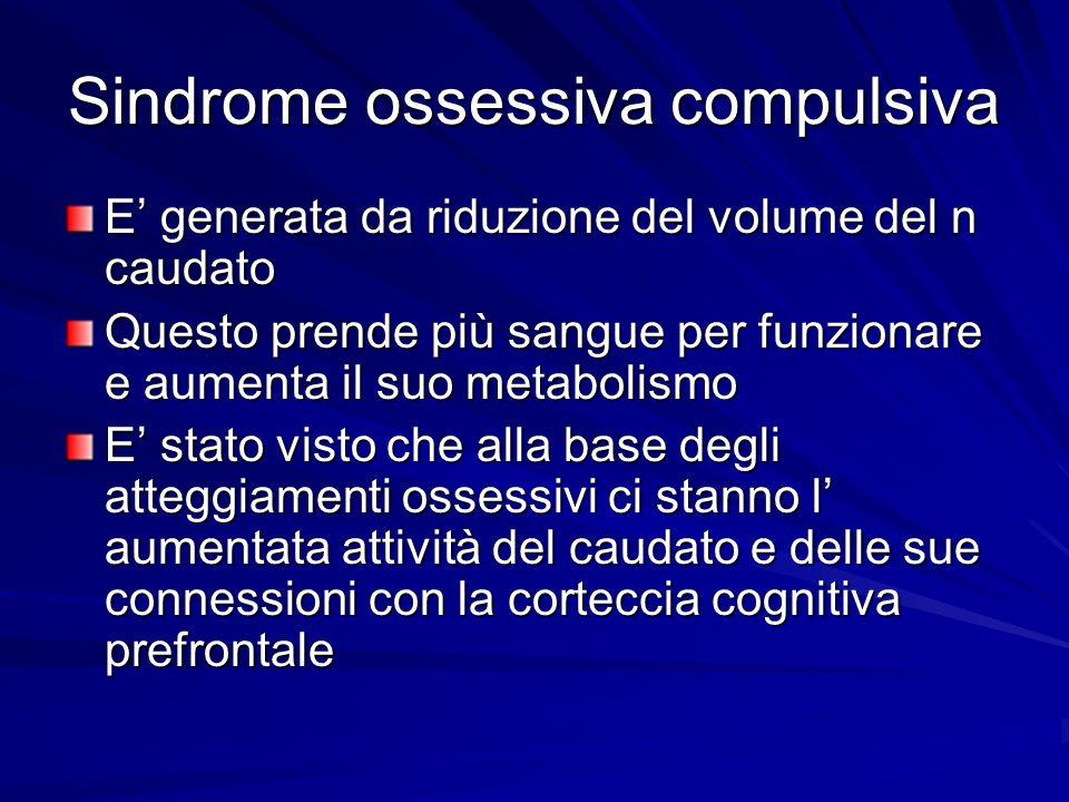 Sindrome ossessiva compulsiva E generata da riduzione del volume del n caudato Questo prende più sangue per funzionare e aumenta il suo metabolismo E
