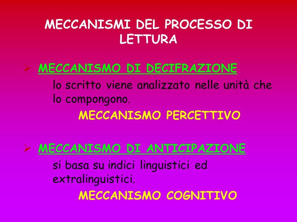 MECCANISMI DEL PROCESSO DI LETTURA MECCANISMO DI DECIFRAZIONE lo scritto viene analizzato nelle unità che lo compongono. MECCANISMO PERCETTIVO MECCANI