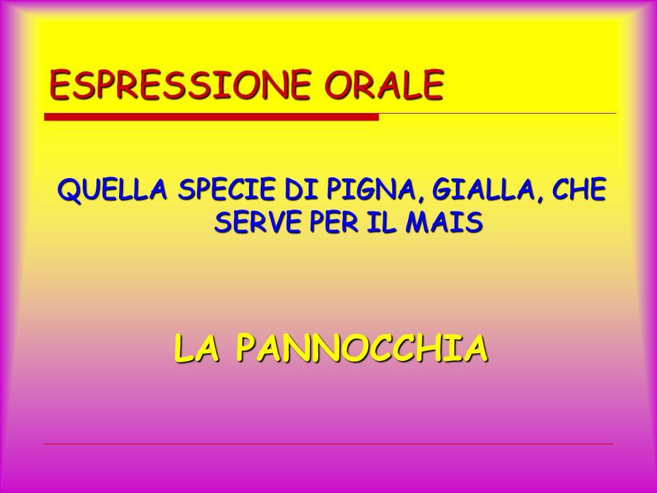 ESPRESSIONE ORALE QUELLA SPECIE DI PIGNA, GIALLA, CHE SERVE PER IL MAIS LA PANNOCCHIA