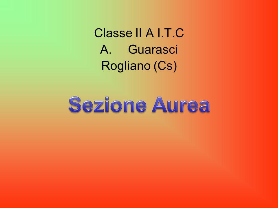 Classe II A I.T.C A.Guarasci Rogliano (Cs)