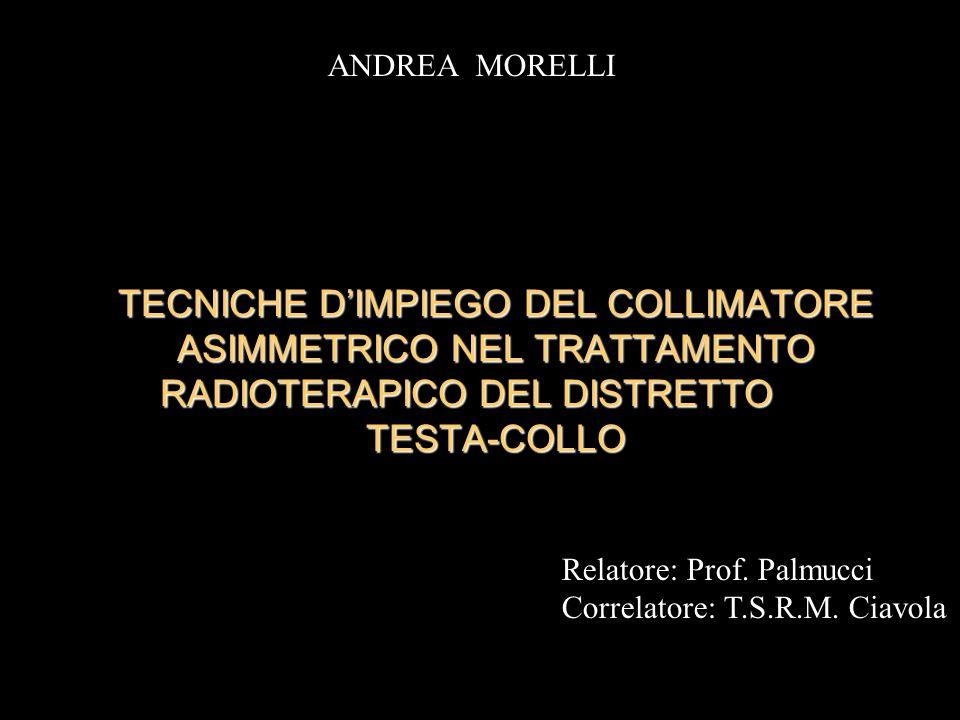TECNICHE DIMPIEGO DEL COLLIMATORE ASIMMETRICO NEL TRATTAMENTO RADIOTERAPICO DEL DISTRETTO TESTA-COLLO Relatore: Prof. Palmucci Correlatore: T.S.R.M. C