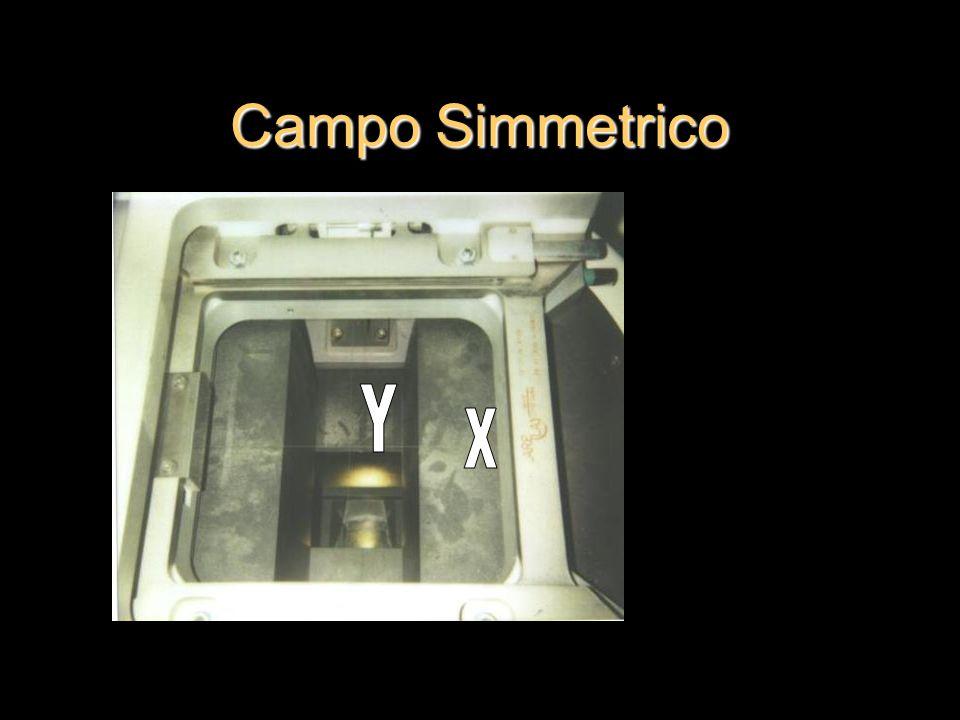 Campo Simmetrico