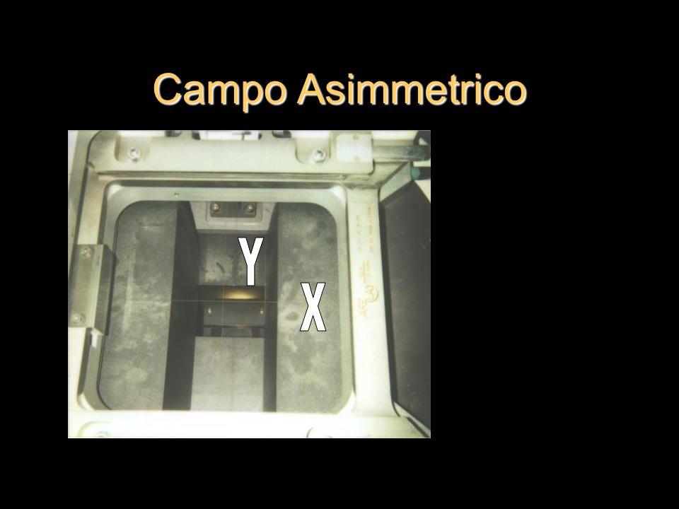 Campo Asimmetrico