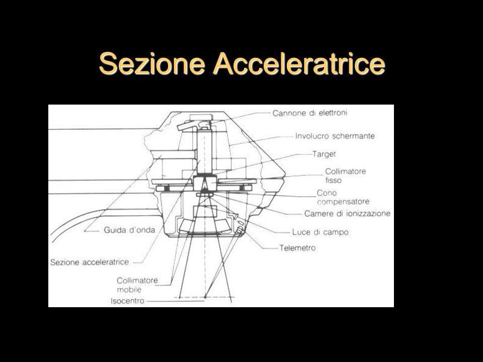 Sezione Acceleratrice