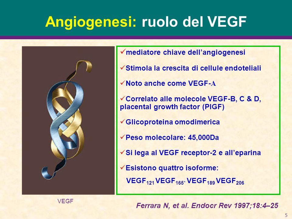 5 Angiogenesi: ruolo del VEGF mediatore chiave dellangiogenesi Stimola la crescita di cellule endoteliali Noto anche come VEGF- A Correlato alle molec