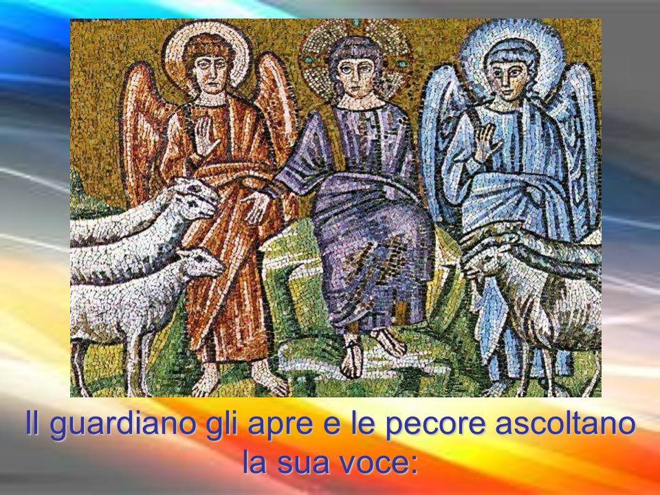 Chi invece entra dalla porta, è pastore delle pecore.