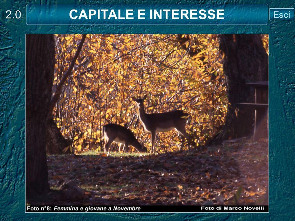 2.0 CAPITALE E INTERESSE Esci