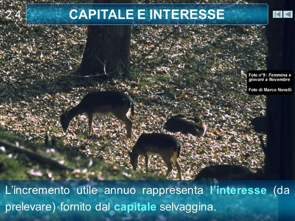 Lincremento utile annuo rappresenta linteresse (da prelevare) fornito dal capitale selvaggina.