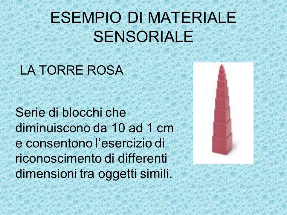 ESEMPIO DI MATERIALE SENSORIALE LA TORRE ROSA Serie di blocchi che diminuiscono da 10 ad 1 cm e consentono lesercizio di riconoscimento di differenti